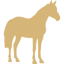 horse-standing-black-shape